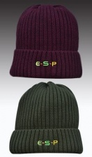 ESP headcase beanie hat