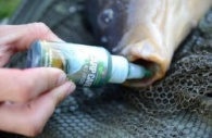 Korda Carp Care all in one